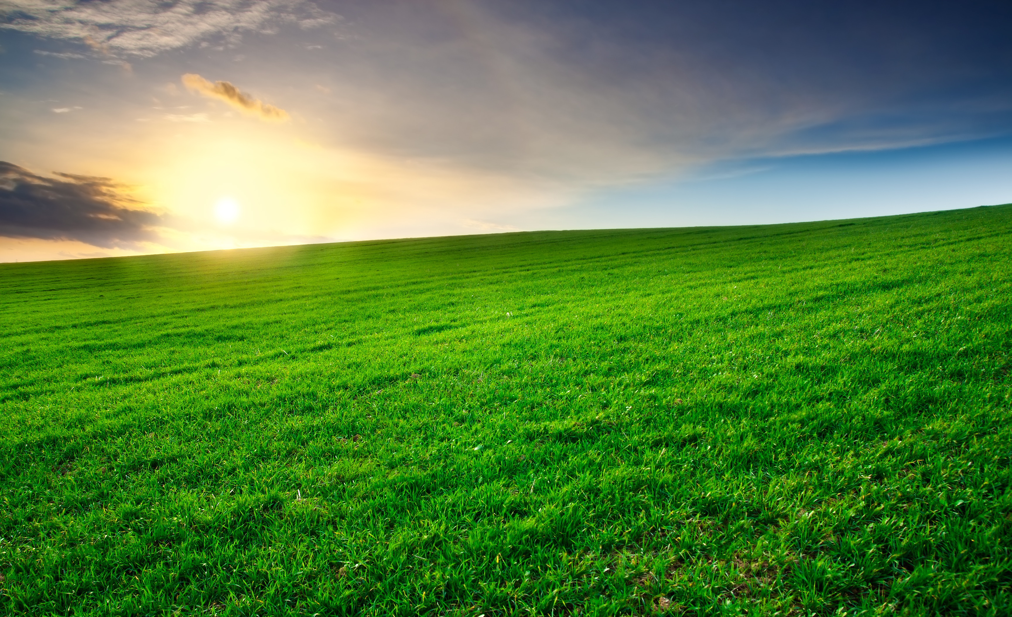 Green-field-at-sunset-with-clouds-in-the-background